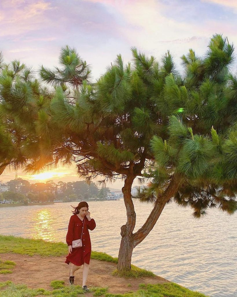5 ideal dating places in Dalat for Valentine's Day