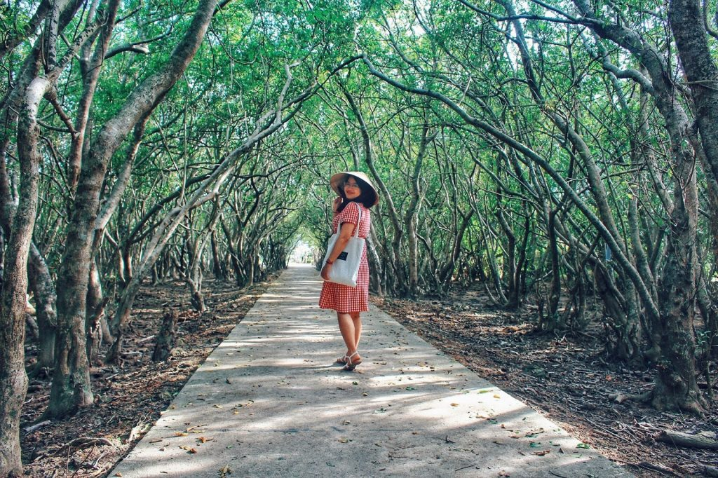 Ru Cha mangrove forest attracts young people in Hue